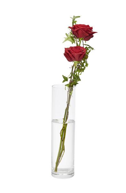 Vas Jennifer, Höjd 66 cm, Transparent