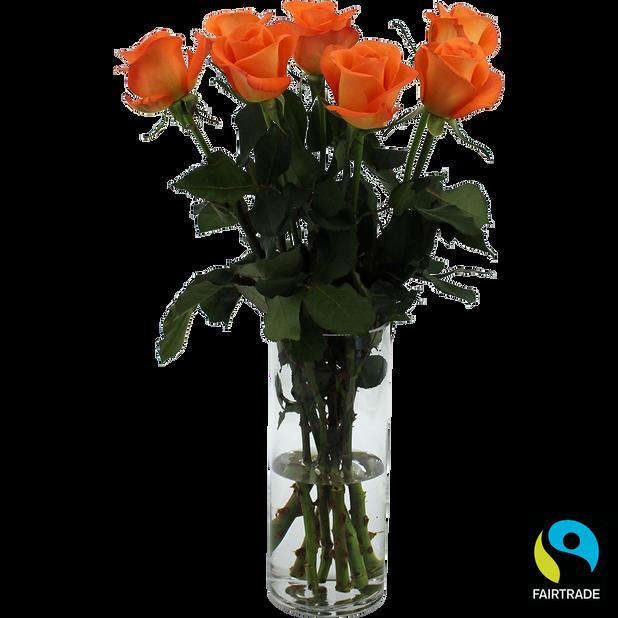 Rosor, Höjd 50 cm, Orange