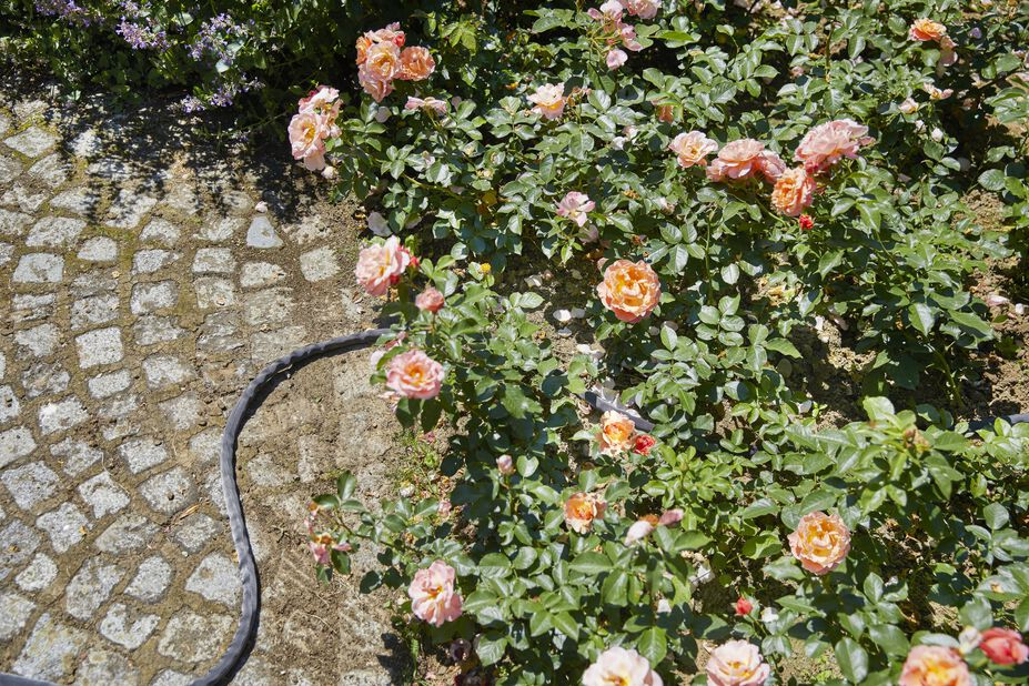 Textilslang Liano Gardena, 20 ml