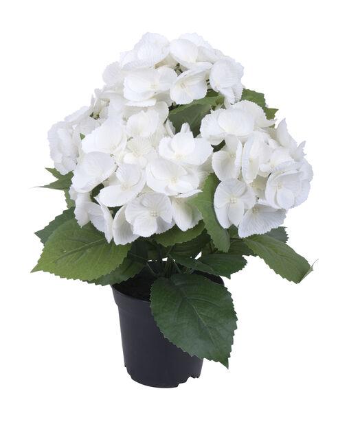 Hortensia konstgjord, Höjd 35 cm, Vit