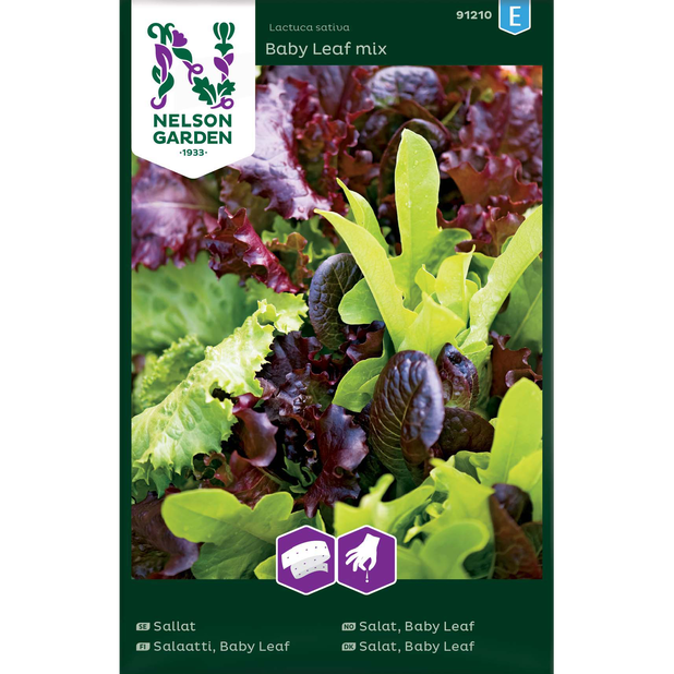 Sallat 'Baby Leaf Mix', Flerfärgad