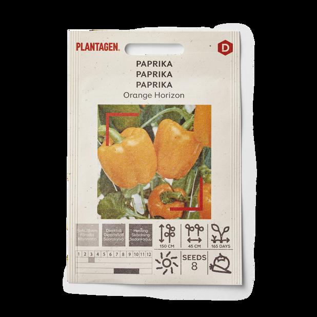 Paprika 'Orange Horizon'