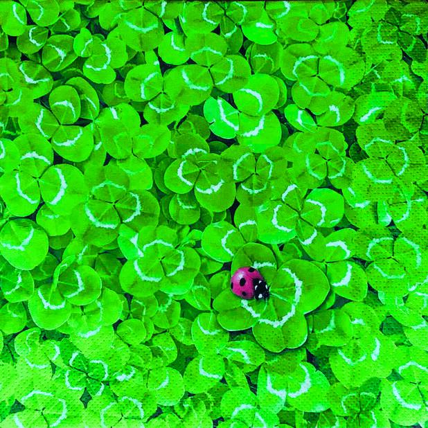 Servetter klöver, Bredd 33 cm, Grön