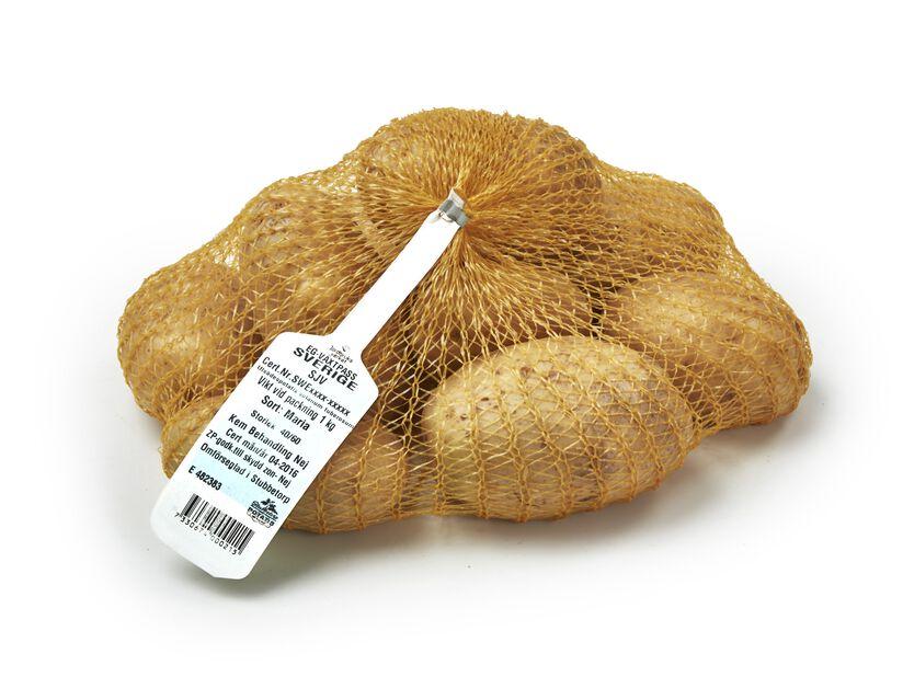 Sättpotatis 'Maria', 1 kg, Flera färger