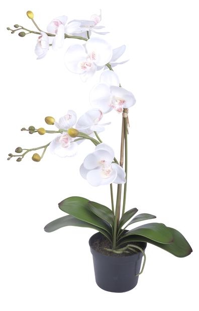 Orkidé i kruka H65 cm, vit, konstgjord