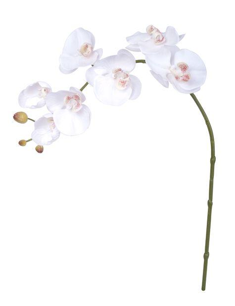 Orkidékvist H73 cm, vit, konstgjord