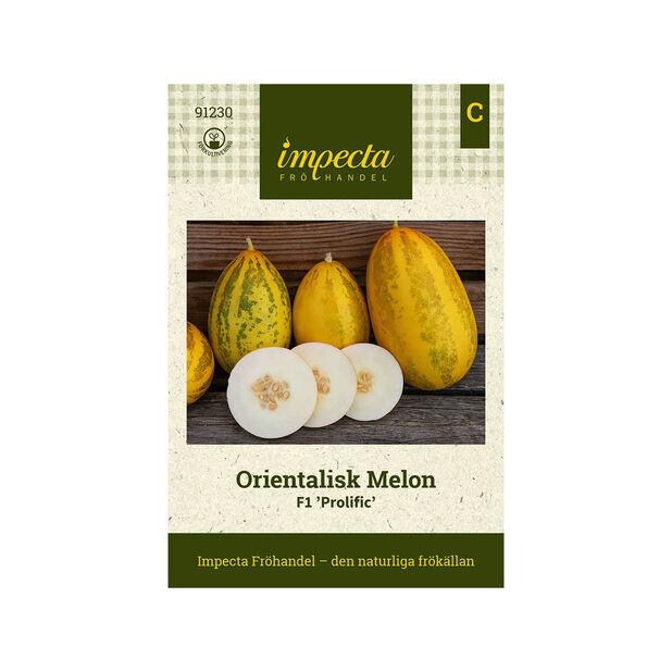 Orientalisk Melon F1 'Prolific', Gul