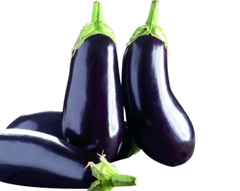 "Aubergine ""Oblong purple"""
