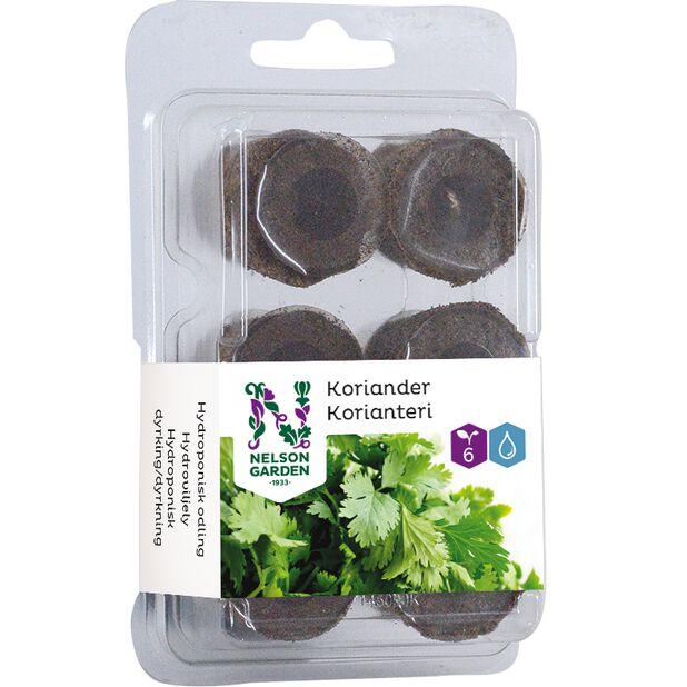 Hydroponisk odlingsplugg koriander, 6-pack, Flerfärgad