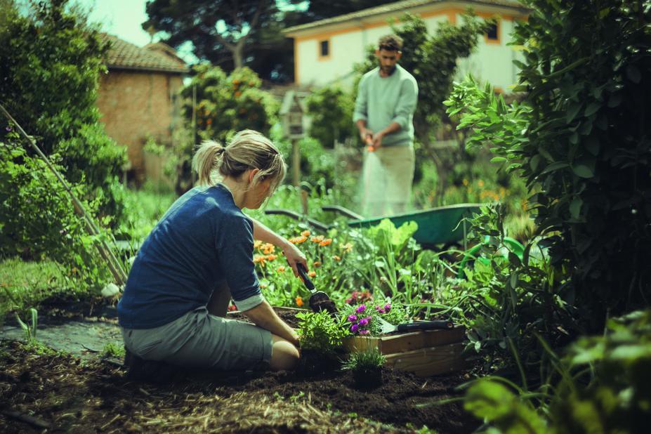 Planteringsspade Xact Fiskars, Längd 37.5 cm, Svart