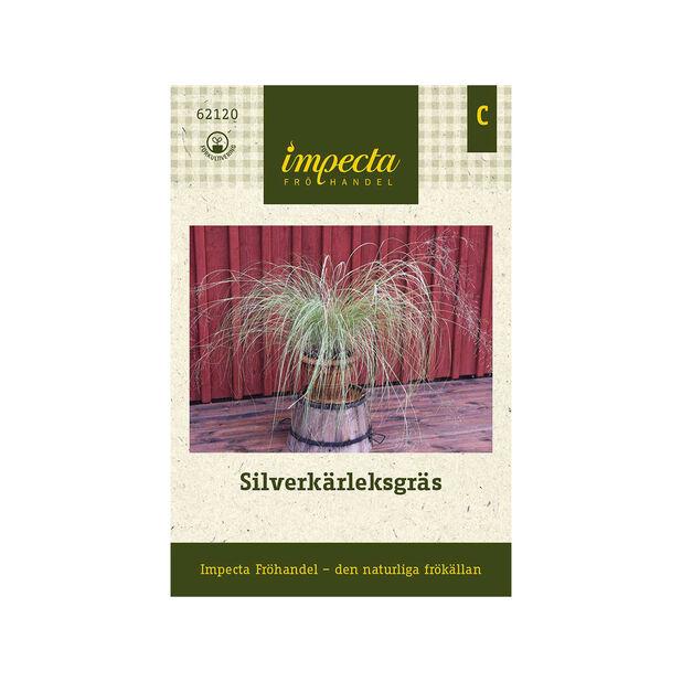 Silverkärleksgräs, Grön