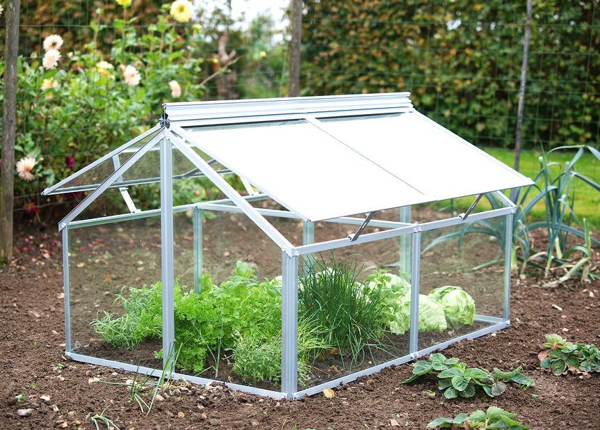 Växthus Gaia, Silver