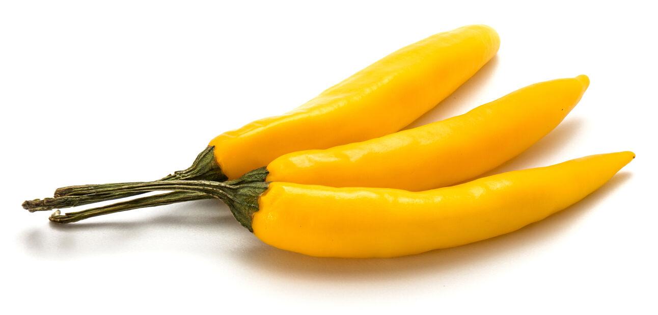 Chili 'Lemon Drop Chili', Ø10.5 cm, Gul