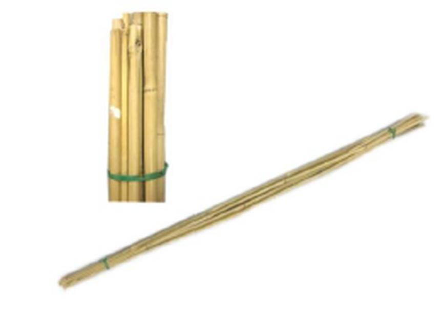 Växtstöd bambu  , Höjd 150 cm, Beige