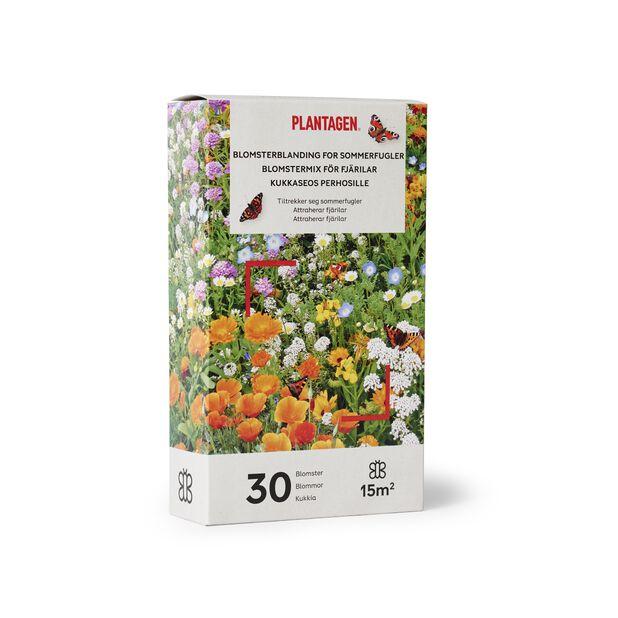 Blomsterblandning för fjärilar, 15 kvm, Flerfärgad