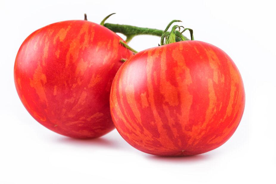 Tomat 'Tigerella', Ø10.5 cm, Röd