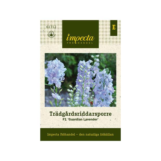 Trädgårdsriddarsporre F1 'Guardian Lavender', Blå