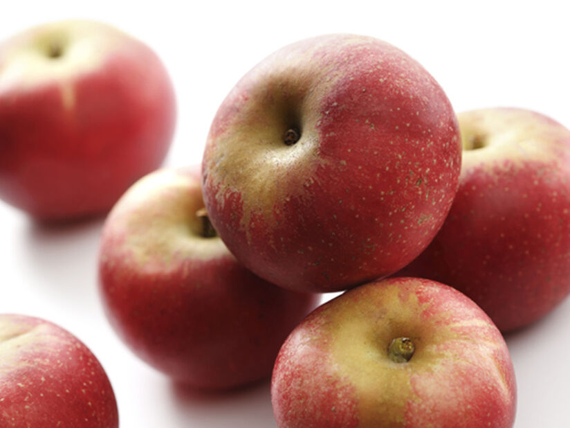 Äpple 'Discovery' A2, Höjd 150 cm, Röd