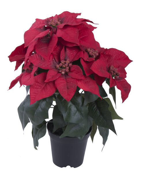 Julstjärna i kruka konstgjord, Höjd 37 cm, Röd
