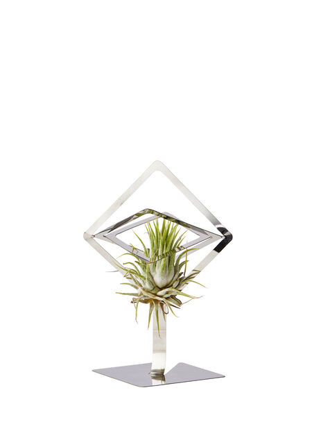 Airplants-hållare Sam, Ø15 cm, Silver