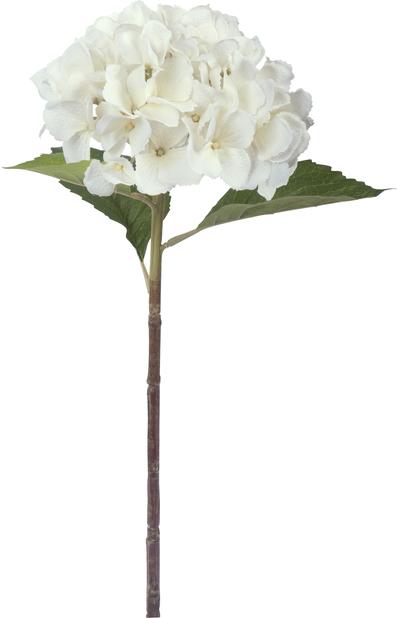 Hortensia snitt H51 cm, vit, konstgjord