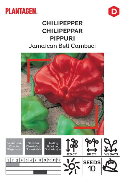 Chilipeppar 'Jamaican Bell Cambuci'