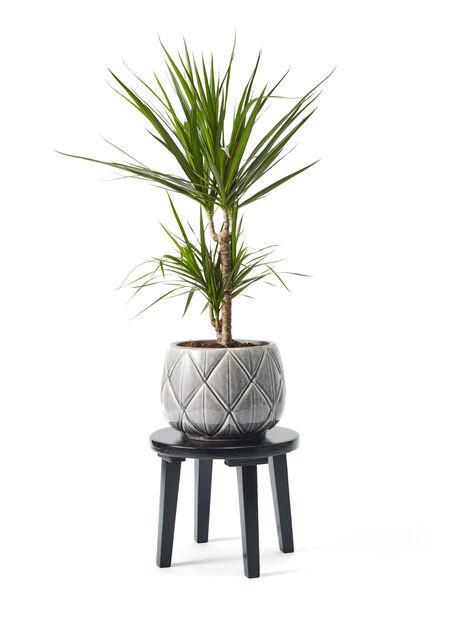 Piedestal Evelina , Höjd 32 cm, Svart