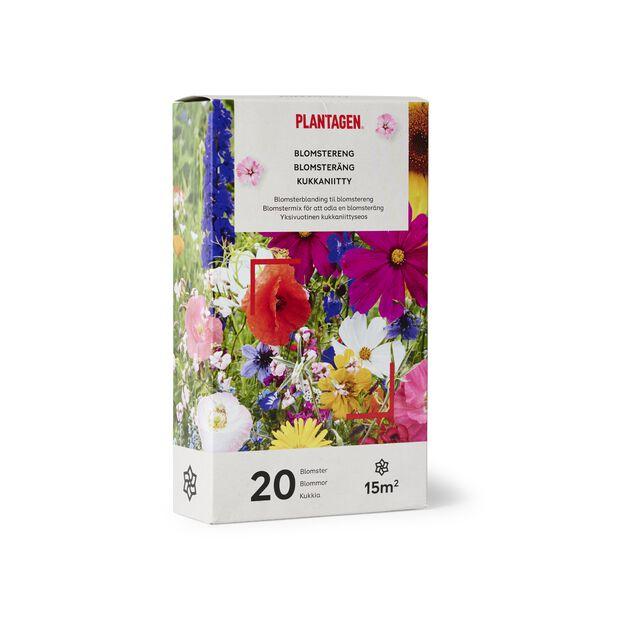 Blomsterblandning ängsblommor, 15 kvm, Flerfärgad
