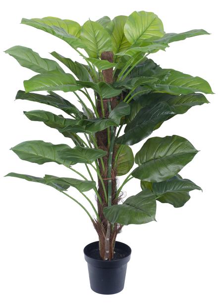 Aureum konstgjord , Höjd 120 cm, Grön