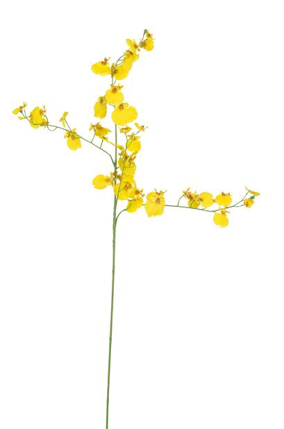 Orkidékvist Oncidium konstgjord, Höjd 92 cm, Gul