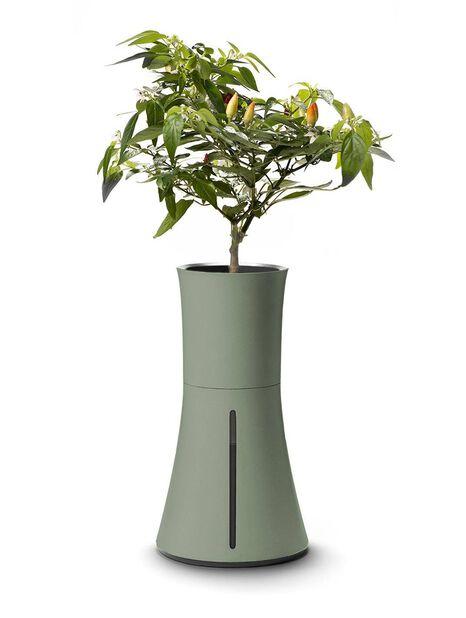 Hydroponisk kruka Botanium , Grön
