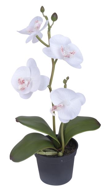 Orkidé mini konstgjord 25 cm