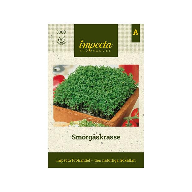 Smörgåskrasse, Grön