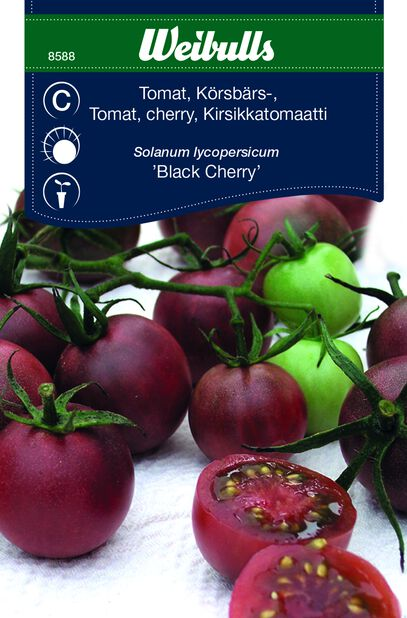 Tomat 'Black Cherry'