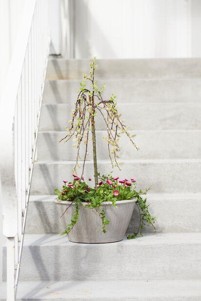 Planteringsskål Balder, Ø36 cm, Vit