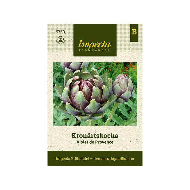 Kronärtskocka 'Violet de Provence', Lila