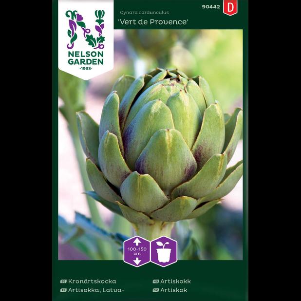 Kronärtskocka 'Vert de Provence', Flerfärgad
