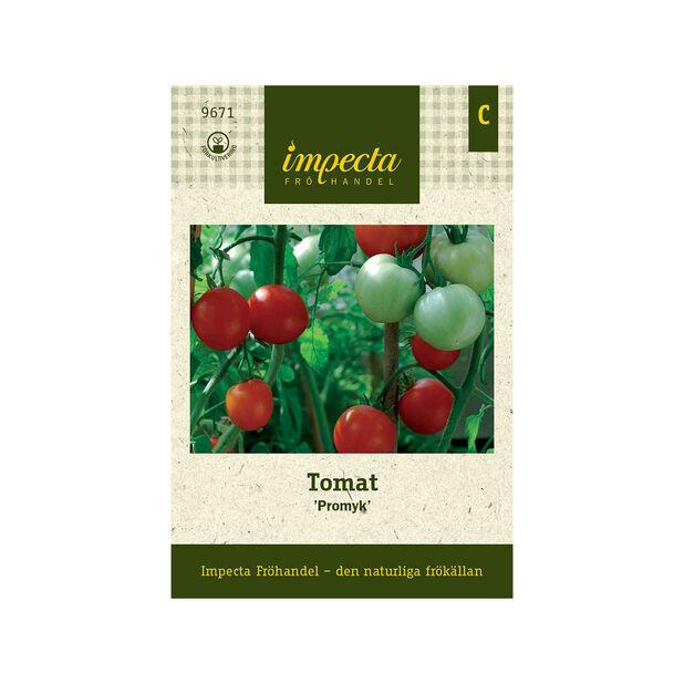 Tomat 'Promyk', Röd