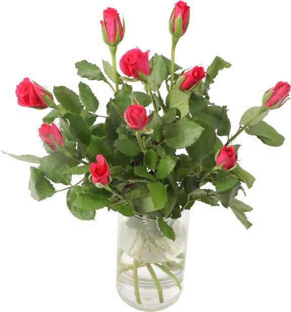 Rosor 10-pack, Höjd 40 cm, Flera färger