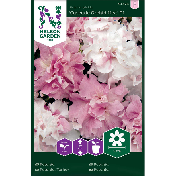 Petunia 'Cascade Orchid Mist' F1, Flerfärgad