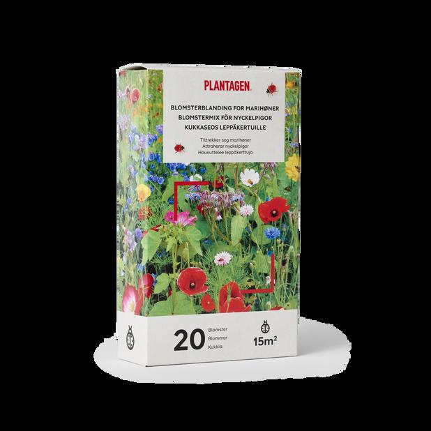 Blomstermix för nyckelpigor, 15 kvm, Flerfärgad