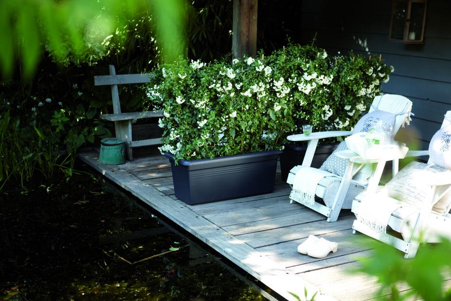 Odlingslåda Green Basics Garden XXL, Längd 80 cm, Grön