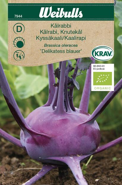 Kålrabbi 'Delikatess Blauer' KRAV