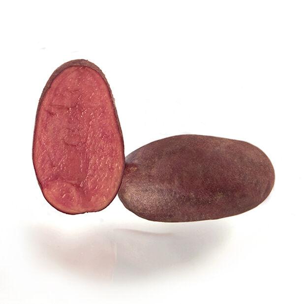 Sättpotatis 'Zoe', 1 kg, Flera färger