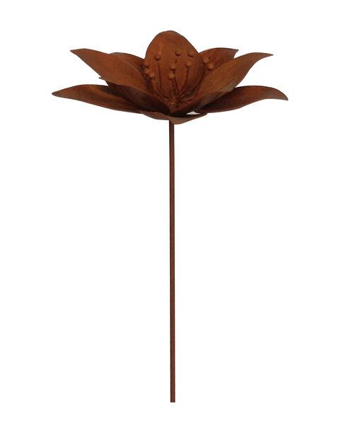 Dekorationspinne blomma, Höjd 95 cm, Rost