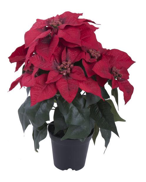 Julstjärna konstgjord, Höjd 37 cm, Röd