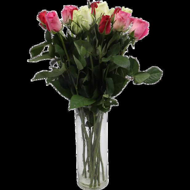 Rosor , Höjd 50 cm, Flera färger