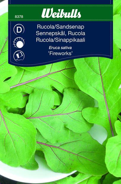 Ruccola 'Fireworks'