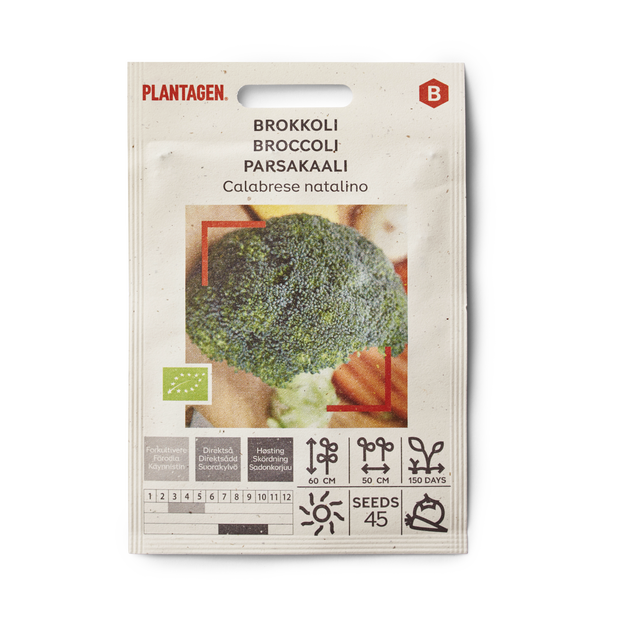 Broccoli 'Calabrese natalino'