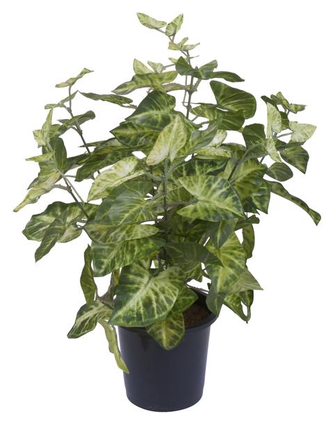 Grönväxt konstgjord, Höjd 39 cm, Flera färger